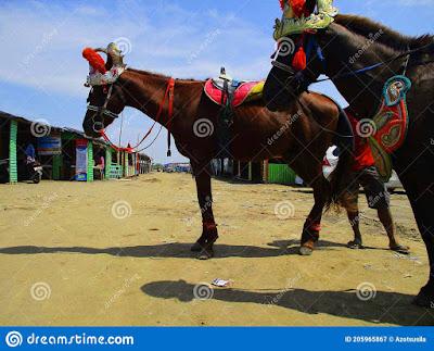 ujung-gebang-beach-beach-adjacent-to-plentong-beach-bandung-city-flowers-paris-van-java-city-which-205965867