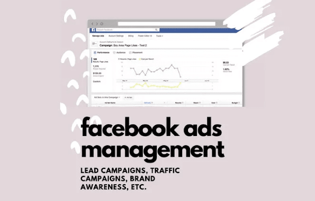 Do You Want Facebook Ads Manager For Your Campaigns