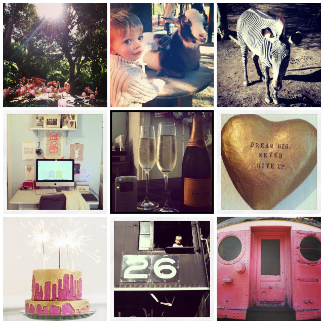 instagrams of the week from oh_lovely_day