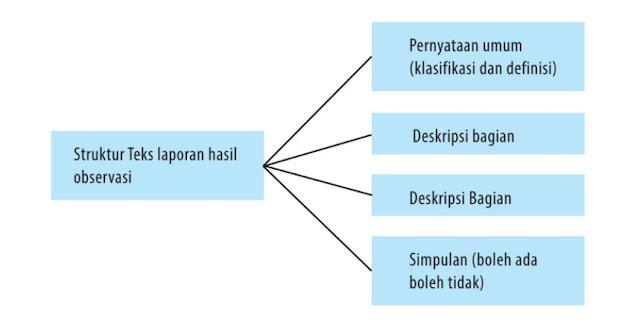 struktur teks laporan hasil observasi atau teks observasi