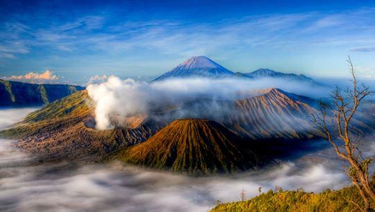 Alamat Lengkap Bank Bumi Arta Di Jawa Timur