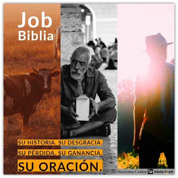 La Vida de Job de la Biblia - Comentarios y Datos