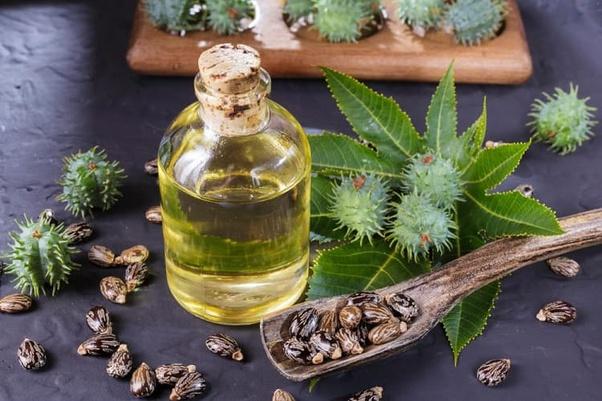बड़े काम का है अरंडी का तेल, इन 13 तकलीफों का इलाज है इसके पास