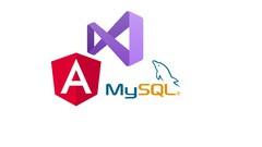 create-web-app-with-angular-12-net-core-web-api-mysql