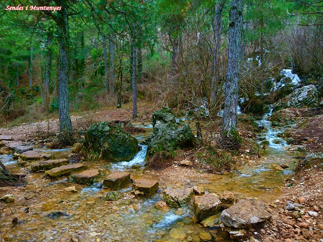 Pequeño arroyo producido por el deshielo y que va a para al río Mundo