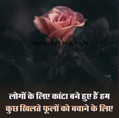 Kaante Shayari In Hindi | Phool Shayari Status