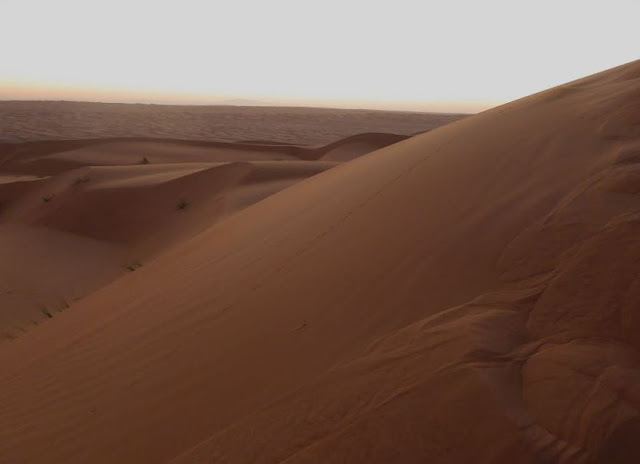 le dune del wahiba sands