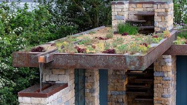 Jardín de Helen Elks-Smith en Chelsea: agua, plantas y techo verde