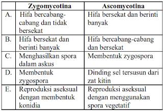 materi biologi kelas 10 ciri jamur Zygomycotina dengan Ascomycotina