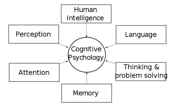 The Psychologist Interpretation of WAT