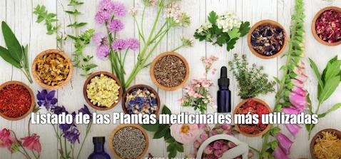Listado de las Plantas medicinales más utilizadas