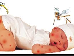 Phun muỗi tại quận Hoàn Kiếm
