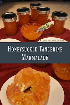 Honeysuckle Tangerine Marmalade pin
