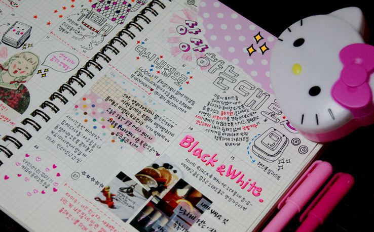 zoe How to Decorate Your Personal Diary
