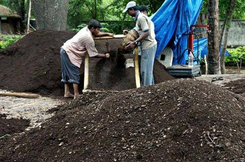 Complete information about vermicompost