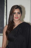 Pavani Reddy in Black Saree Sleeveless Choli ~  Exclusive 10.JPG