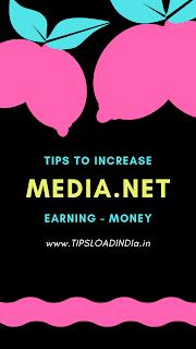 Media.net increase income