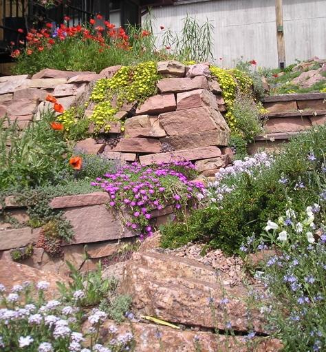 Prairiebreak: Garden