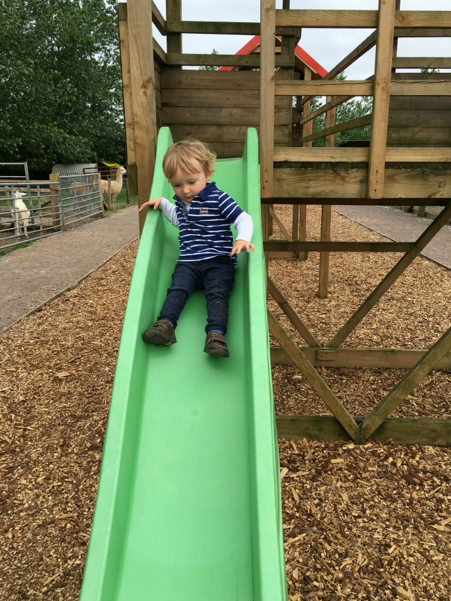 Walnut-tree-farm-park-A-Toddler-coming-down-slide