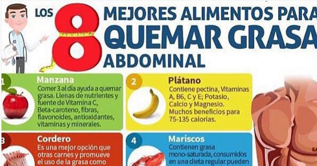 Rutinas Y Tips De Gym Los Mejores Alimentos Para Quemar Grasa Abdominal