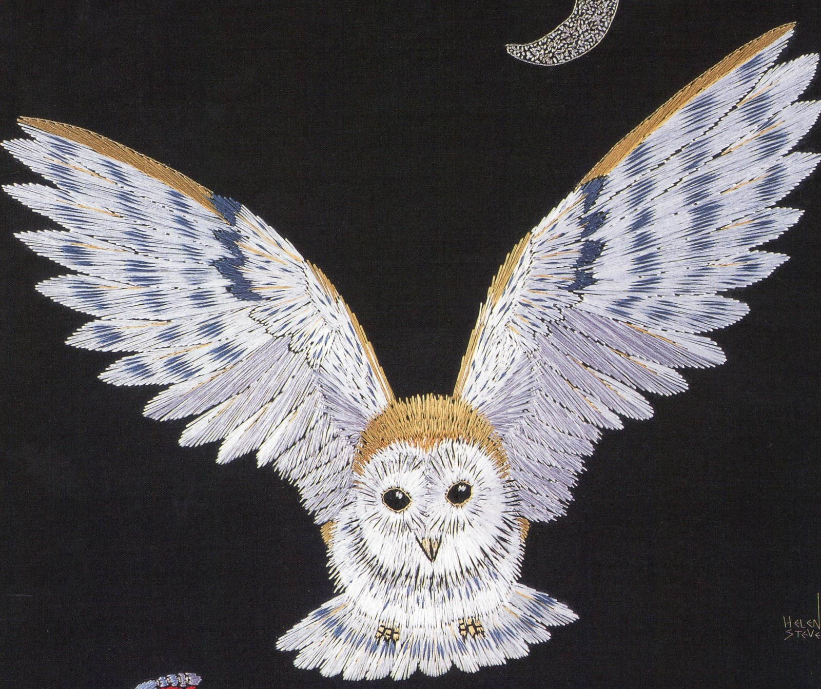 Barn Owl Diagram Overhead Crane Pendant Wiring Food Web Image Search Results Picture