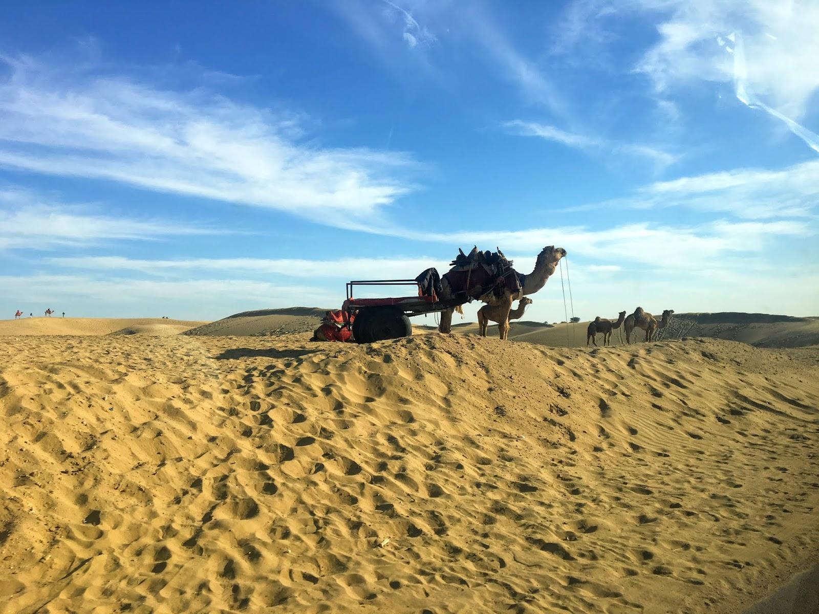 Sam Sand Dunes, Rajasthan