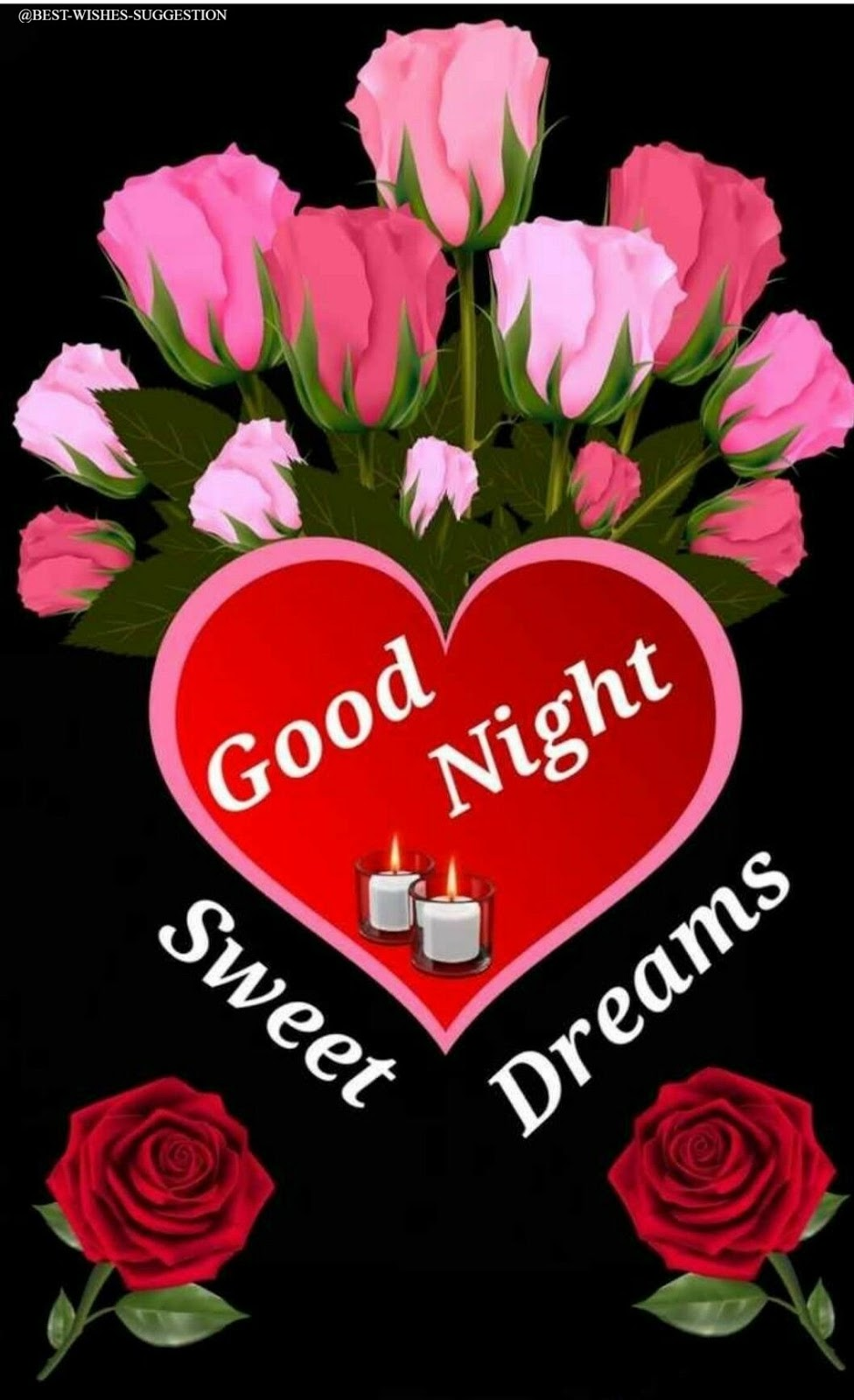 good-night-flower-photos