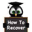 "SEO Bee Tree | ""How to Recover from Penguin 2.0"""