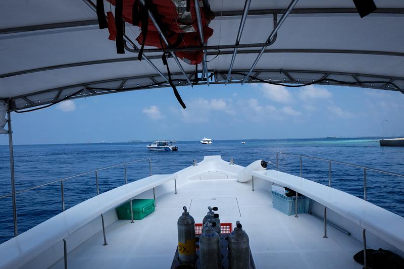 الغطس في المالديف