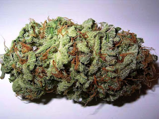 ¿Cuándo podré fumar mi marihuana?
