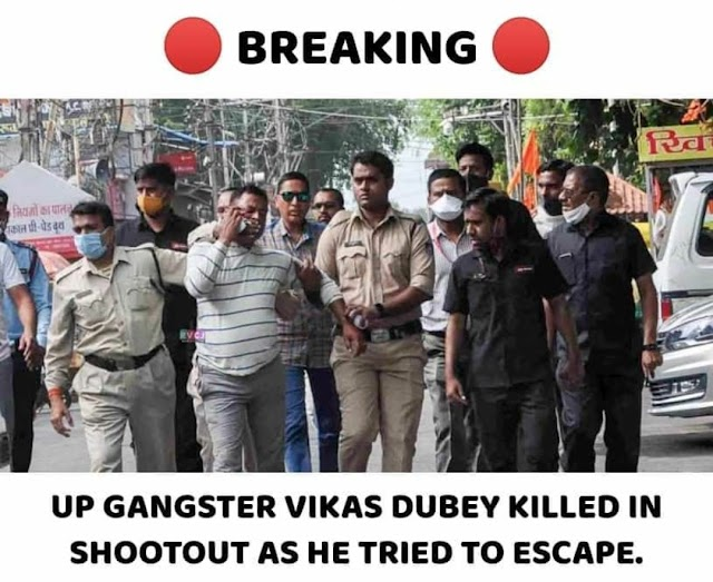 Vikas Dubey killed in encounter in Kanpur, UP