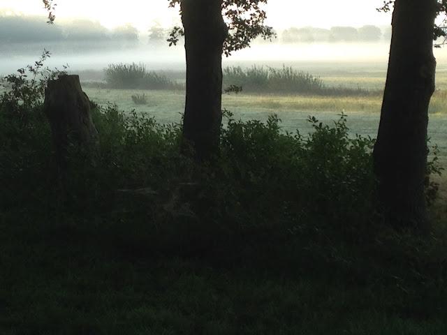 Overstroomgebied Regge Claire Poutsma HetBuurtbos