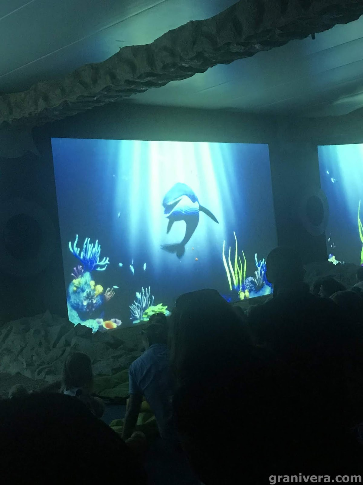 wieloryb-błękitek-fokarium-Sarbsk