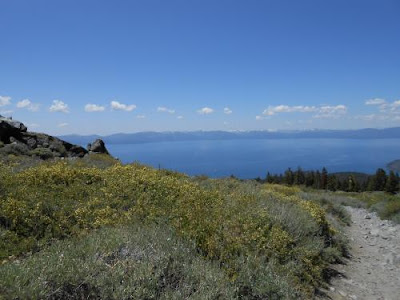 hiking, lake tahoe, high alpine, trail