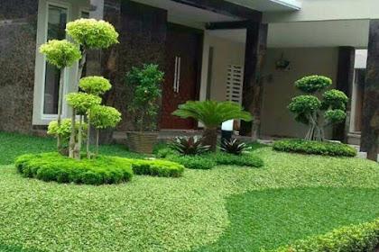 Tukang taman pasuruan, jasa pembuatan taman pasuruan, jasa renovasi taman pasuruan 082230564685