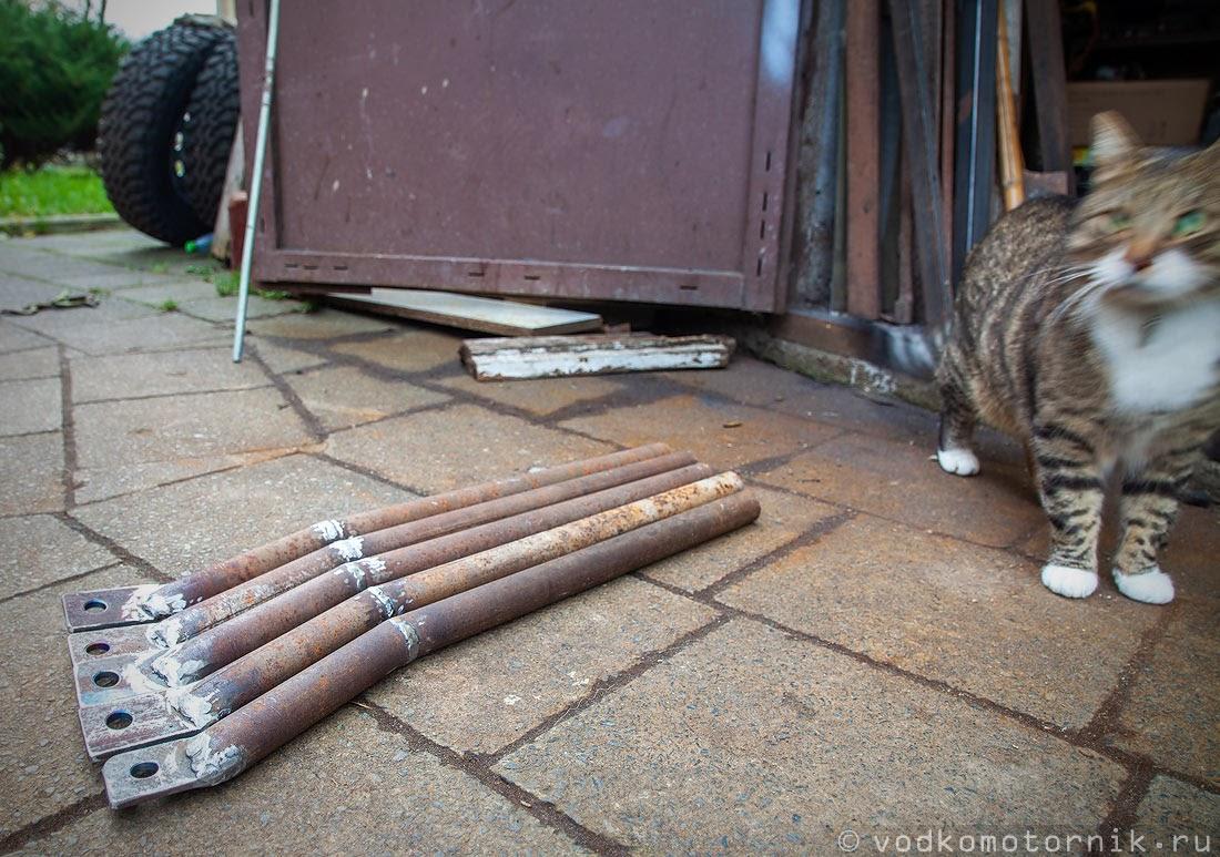 Главный помошник - кот Шмель