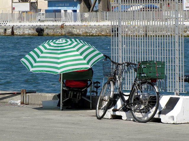 Fishing on a pier, with a parasol and a bicycle with a plastic crate, port of Livorno