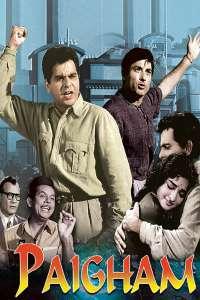 Download Paigham (1959) Hindi Movie 720p WEB-DL 1.2GB