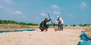 Peranan TNI dalam Menjaga Ketahanan Pangan