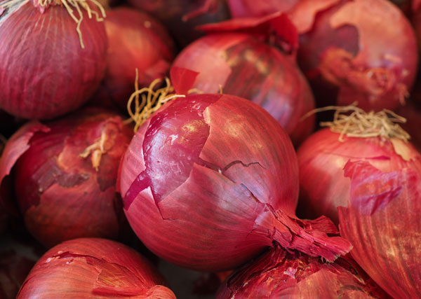 breast cancer prevention: Red onion aids in breast cancer prevention