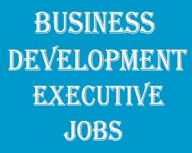 Business Development Executive Jobs In Bangalore