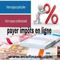 Paiement  de la TVA sur les services électroniques en ligne (mini-guichet unique) en France et plusieurs pays de l'UE