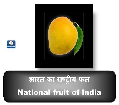 भारत के राष्ट्रीय प्रतीक और चिन्हों को याद रखने का आसान तरीका | National Symbols of India | Easy Trick To Learn National Symbols of India | Gyaani Ram