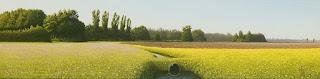paisajes-horizontales-cuadros