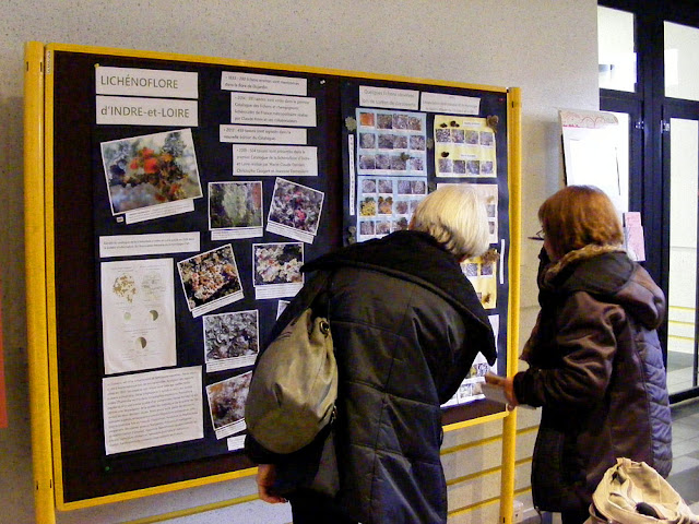 Poster presentation on lichens at the Rencontres Botaniques, University Francois Rabelais.  Indre et Loire, France. Photographed by Susan Walter. Tour the Loire Valley with a classic car and a private guide.