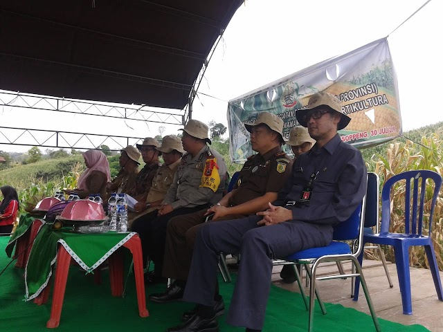 Panen Perdana Jagung Hibrida, Bupati Soppeng Berikan Bantuan Alat Pengayak Jagung