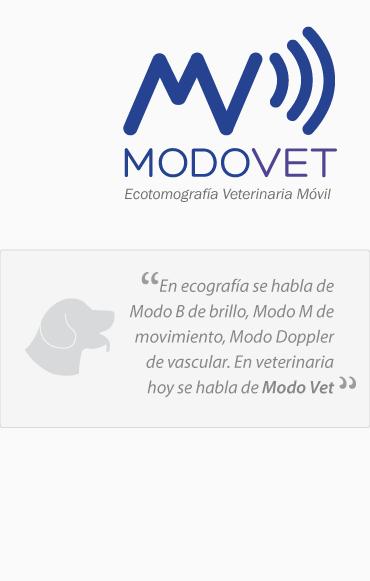 www.modovet.com
