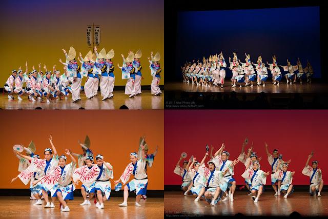東京新のんき連、セシオン杉並まつり、阿波踊りの記事のカバー写真