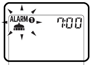 Alarm Toyota Agya Daihatsu Ayla