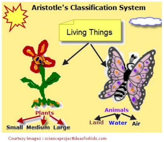 12 Fakta Menarik Tentang Aristoteles Yang Melegenda